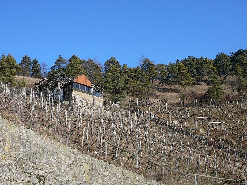 Kleinstrukturierte Weinbau-Hänge in Nachbarschaft zur Benediktushöhe - Ziel unserer Nachmittagsexkursion. Foto: R. Pfeifer