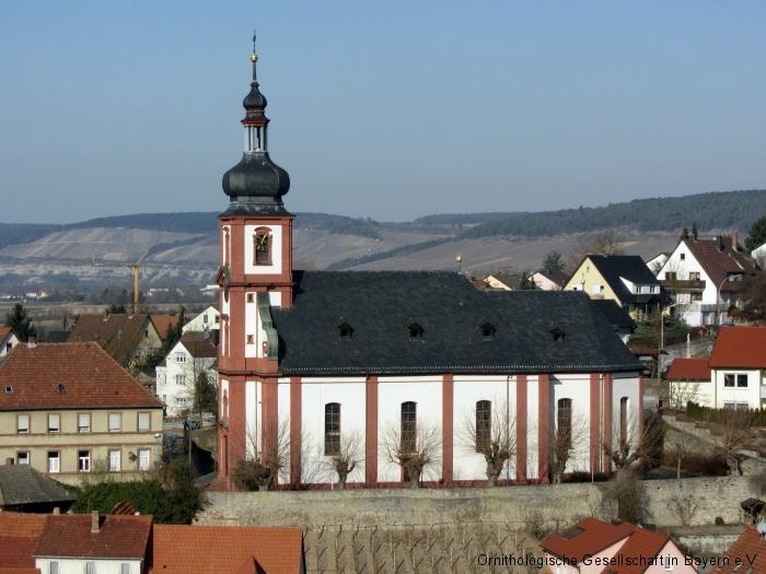 Die barocke Pfarrkirche von Retzbach,  von 1736 bis 1738 von Balthasar Neumann.erbaut
