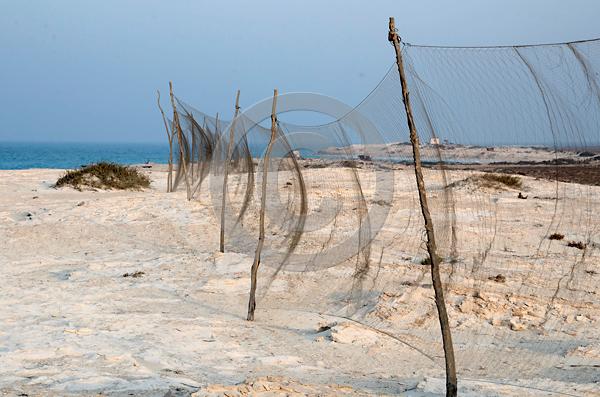 Kilometerlange Vogelfanganlage an der Mittelmeerküste Ągyptens, Foto: Dr. Holger Schulz, Wildlife Consulting
