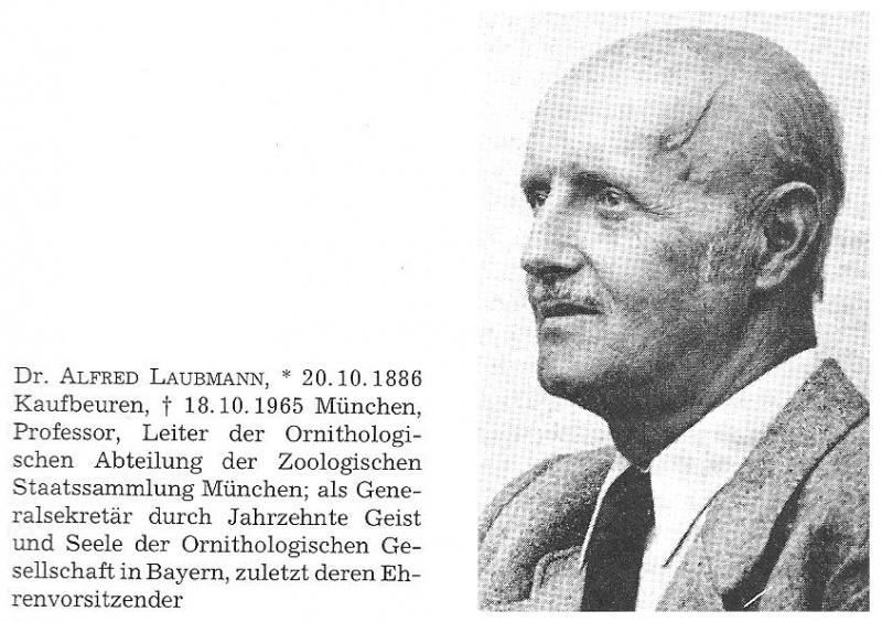 Alfred Laubmann