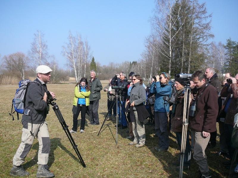 4. Bayerische Ornithologentage 2014 Exkursion zum Kochelsee unter der Leitung von Thomas Guggemoos
