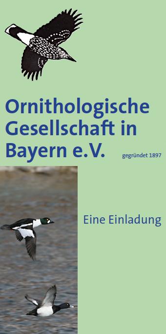 OG-Bayern Faltblatt Einladung